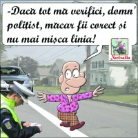 Sa fie politistul corect