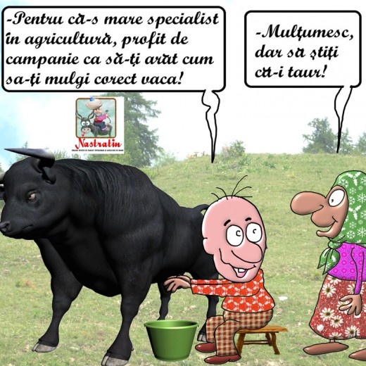 In campanie inveti si sa mulgi vaca