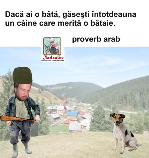 PROVERB ARAB