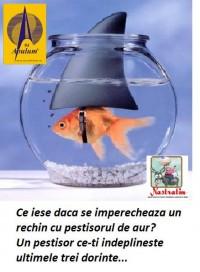 IMPERECHERE CIUDATA