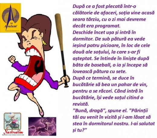 BATA DE BASEBALL
