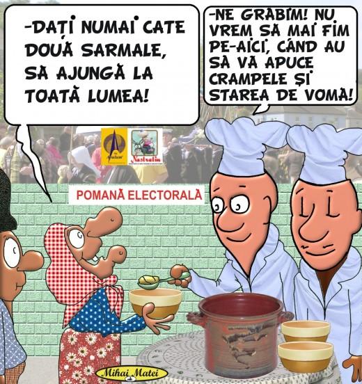 POMANA ELECTORALA