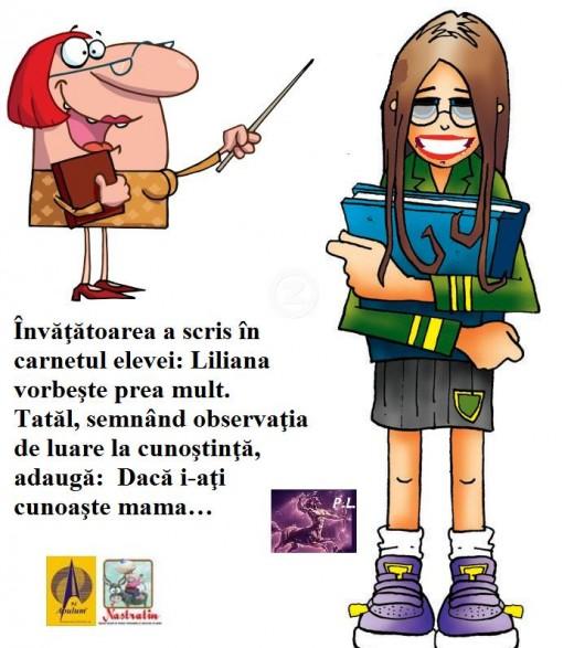 MICA VORBAREATA