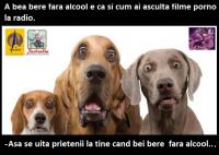 BERE FARA ALCOOL?