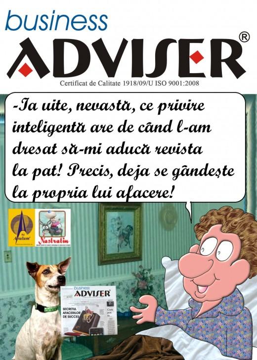 Cititi Business Adviser!