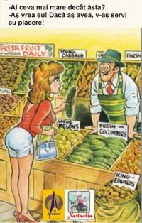 Micul agricultor