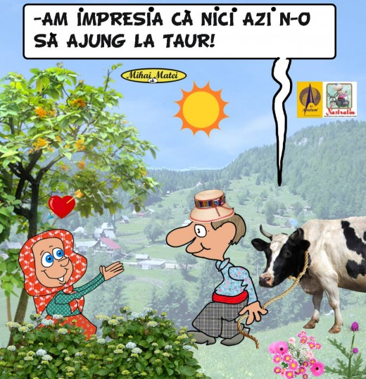 Vaca ghinionista
