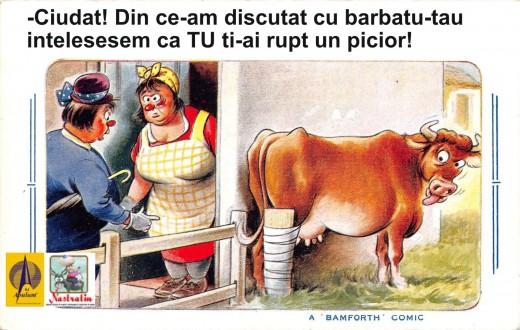Care vaca si-a rupt piciorul?