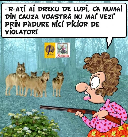Violatorii din padure