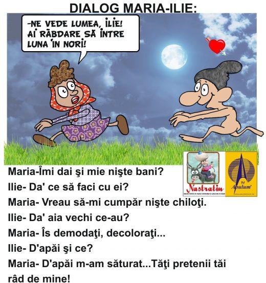 Maria si Ilie